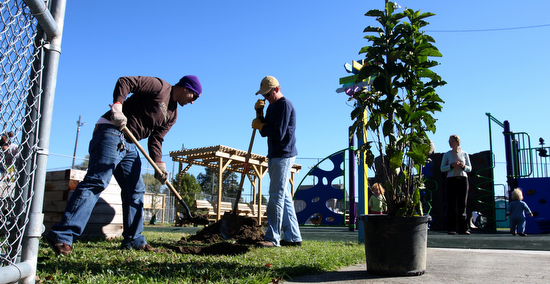 Volunteers plant a tree while children play behind them at Wisner Playground in November 2010.  (UptownMessenger.com file photo by Sabree Hill)