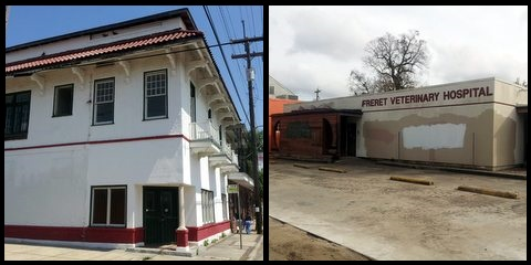 At left, the cluster of buildings owned by the Barreca family at Cadiz and Freret. At right, the former Freret Veterinary Hospital. (Robert Morris, UptownMessenger.com)