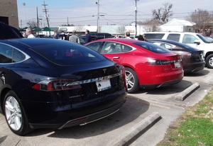 A row of Teslas in the parking lot of Company Burger on Freret Street for a local owners' meetup in February. (photo courtesy of David Wolf)