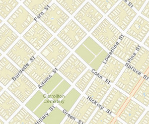 The robbery took place on Cohn near Adams. (map via NOPD)