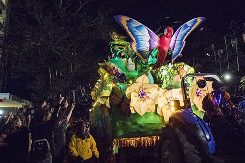 """Bacchus' """"On Butterfly Wings"""" makes its way down St. Charles avenue. Bacchus 2016 rolled with the theme """"Flights of Delight."""" (Zach Brien, UptownMessenger.com)"""