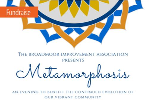 Broadmoor Metamorphosis
